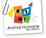 Animal Adoption New Mexico