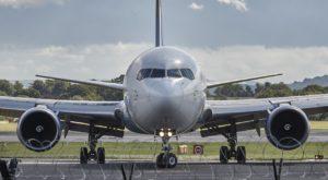 air plane dogs abuquerque