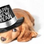 Happy New Year Vetco